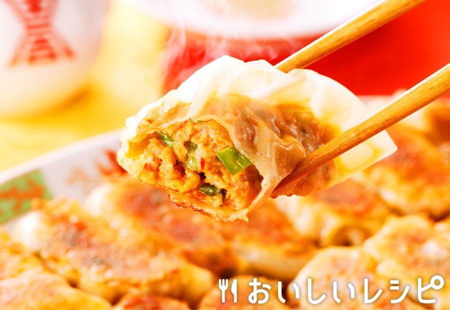 黄金キムチ餃子