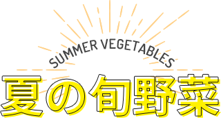 SUMMER VEGETABLES 夏の旬野菜
