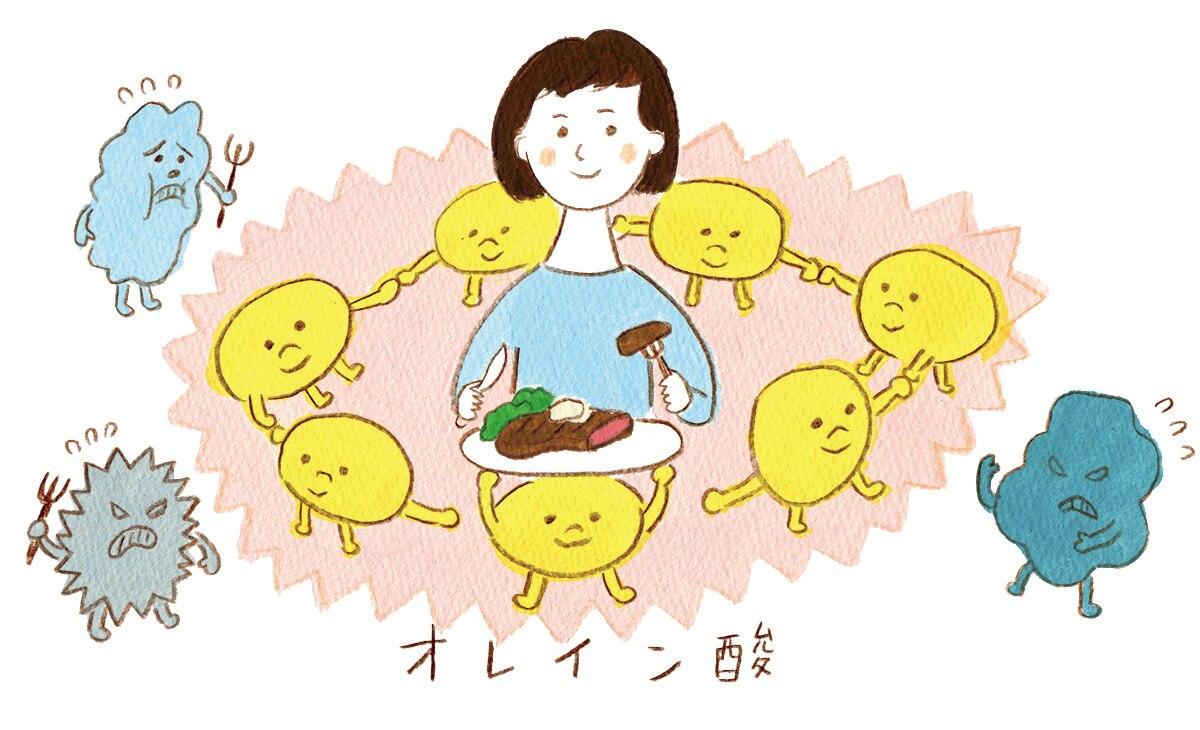 オレイン酸で生活習慣病を予防   健康に欠かせない「肉の効能」   エバラ食品